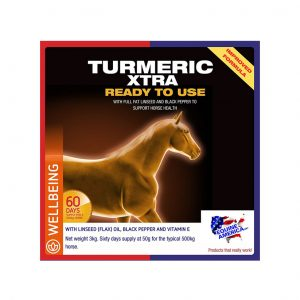 Equine America Turmeric Xtra 3kg for sale Evesham and online.