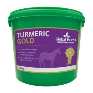 Global Herbs Turmeric 1.8kg for sale Evesham and online.