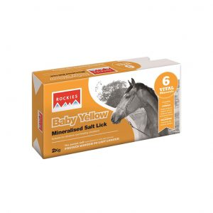 Horslyx-Rockies-Salt-Licks-2kg for sale Evesham and online.