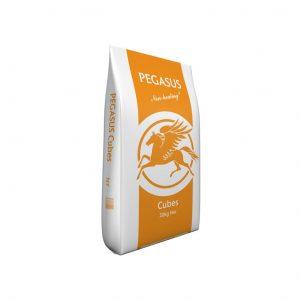Pegasus Cubes 20kg for sale Evesham and online.